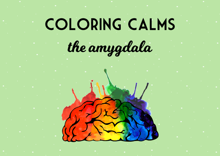 coloring relaxes the amygdala