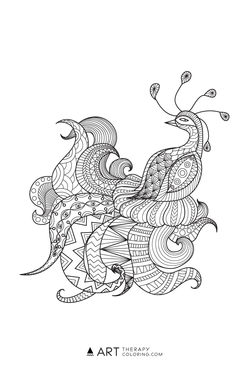 Free Peacock Coloring Page for Adults Art Therapy Coloring