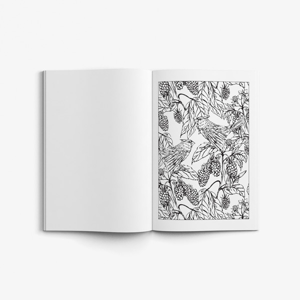 Birds coloring book vol 2 47