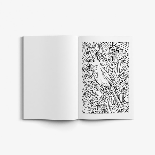 Birds coloring book vol 2 54